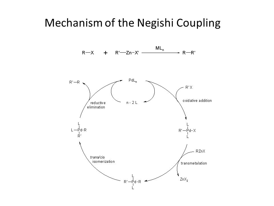 Mechanism of the Negishi Coupling