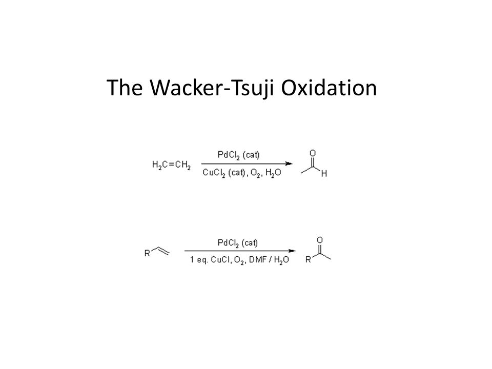 The Wacker-Tsuji Oxidation
