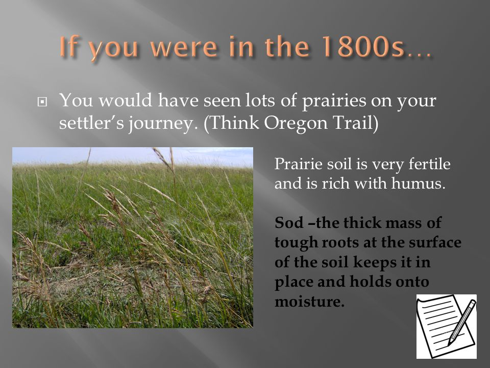  You would have seen lots of prairies on your settler's journey. (Think Oregon Trail) Prairie soil is very fertile and is rich with humus. Sod –the t