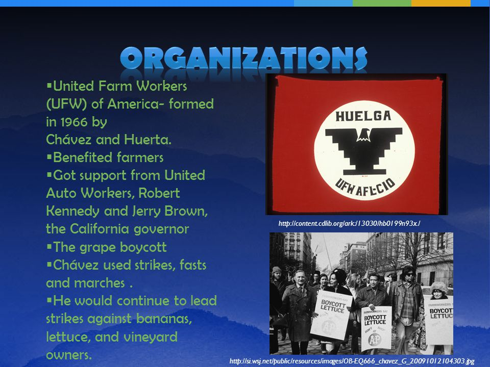  United Farm Workers (UFW) of America- formed in 1966 by Chávez and Huerta.
