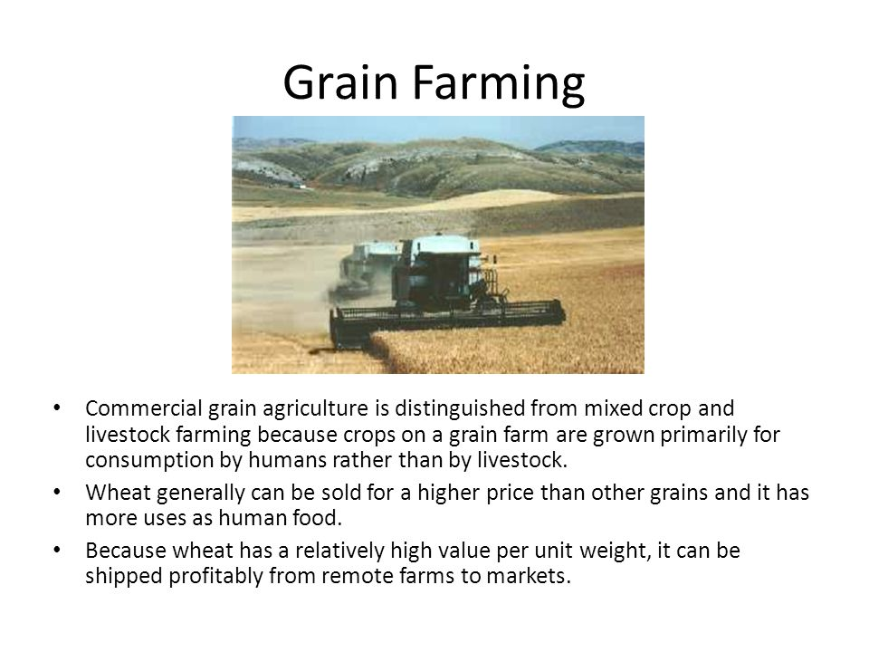 Grain Farming Commercial grain agriculture is distinguished from mixed crop and livestock farming because crops on a grain farm are grown primarily fo