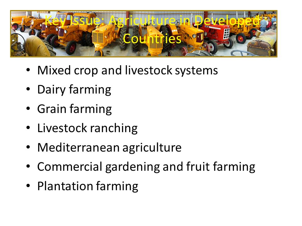 Key Issue: Agriculture in Developed Countries Mixed crop and livestock systems Dairy farming Grain farming Livestock ranching Mediterranean agricultur