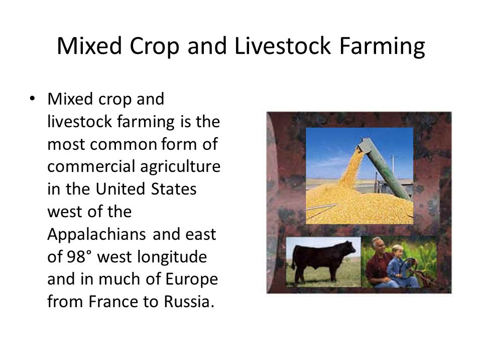 Characteristics of Mixed Crop and Livestock Farming The most distinctive characteristic of mixed crop and livestock farming is its integration of crops and livestock.