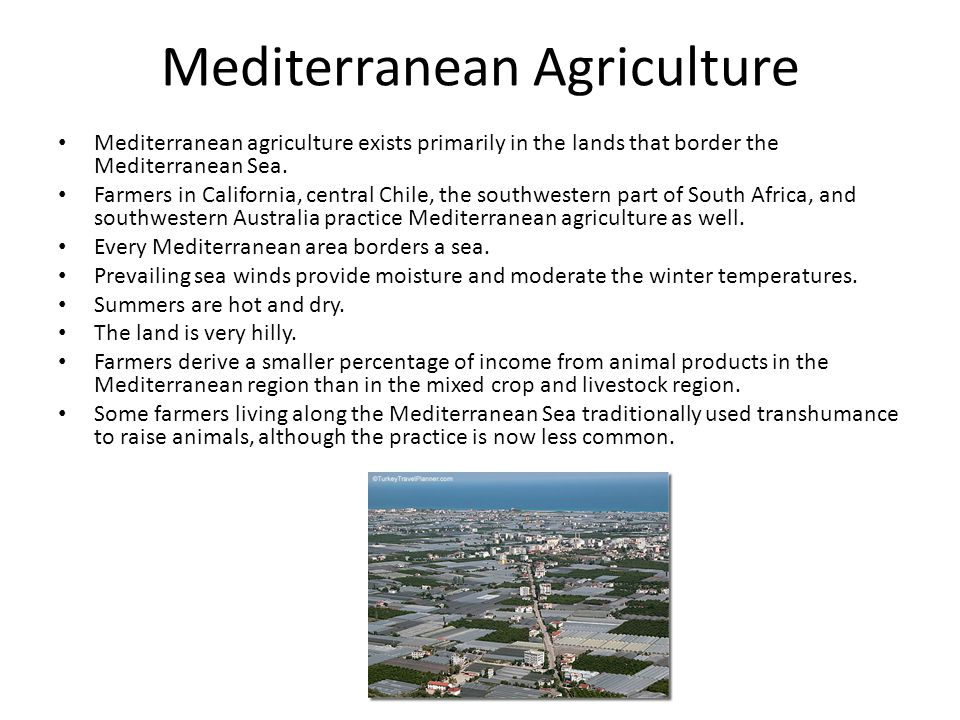 Mediterranean Agriculture Mediterranean agriculture exists primarily in the lands that border the Mediterranean Sea. Farmers in California, central Ch