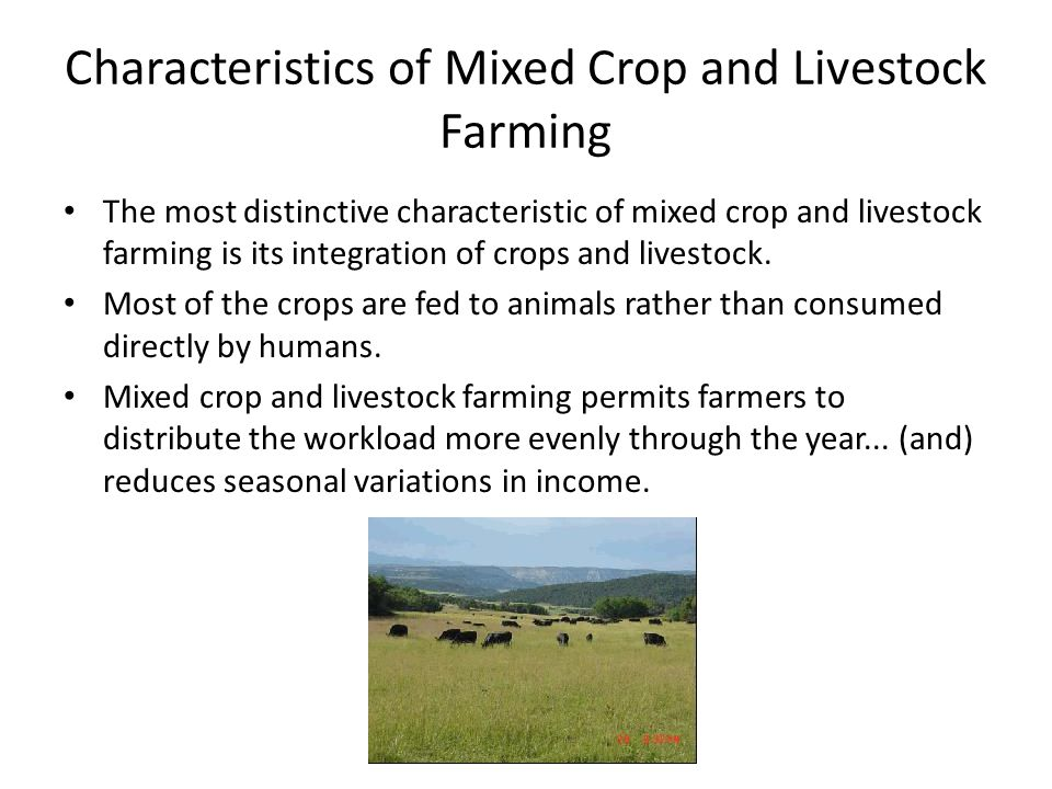 Characteristics of Mixed Crop and Livestock Farming The most distinctive characteristic of mixed crop and livestock farming is its integration of crop