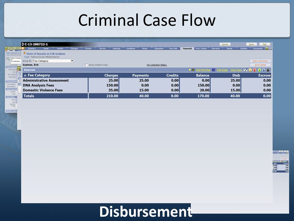 Criminal Case Flow Disbursement