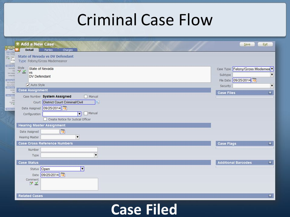 Criminal Case Flow Case Filed