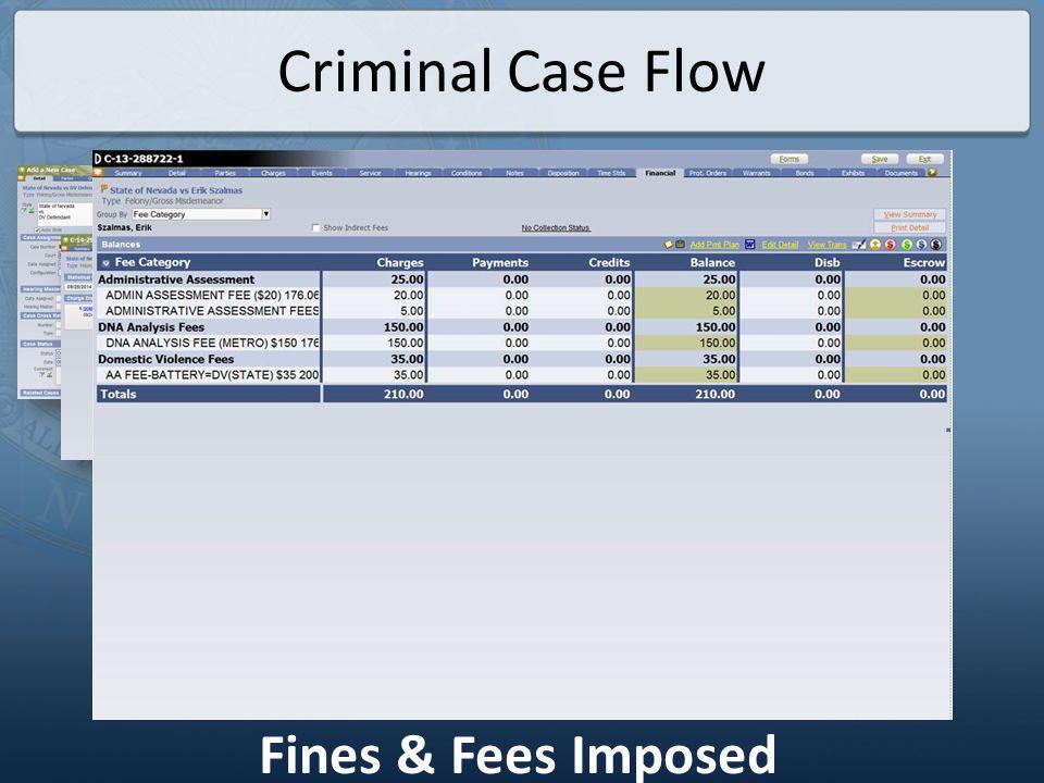 Criminal Case Flow Payment