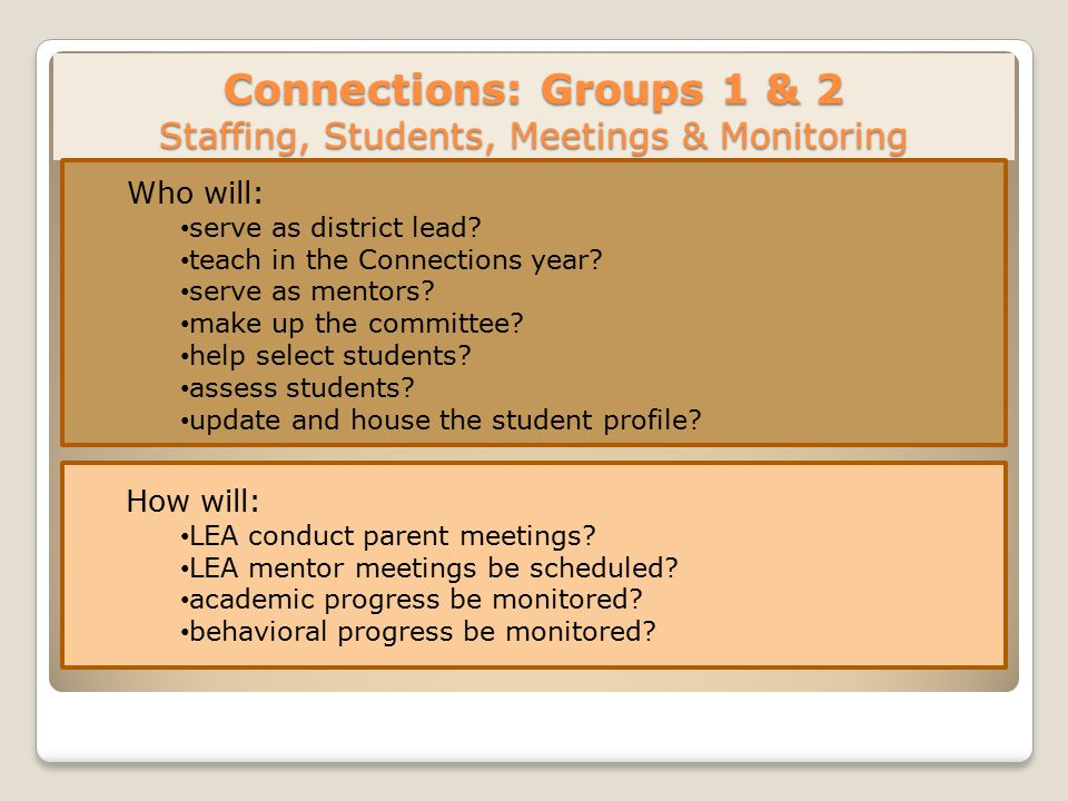 Connections: Groups 1 & 2 Staffing, Students, Meetings & Monitoring Who will: serve as district lead.