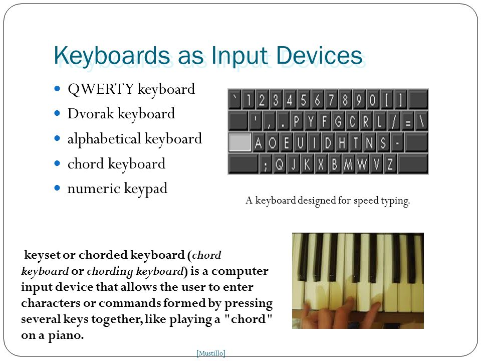 Keyboards as Input Devices QWERTY keyboard Dvorak keyboard alphabetical keyboard chord keyboard numeric keypad [ Mustillo ] A keyboard designed for speed typing.