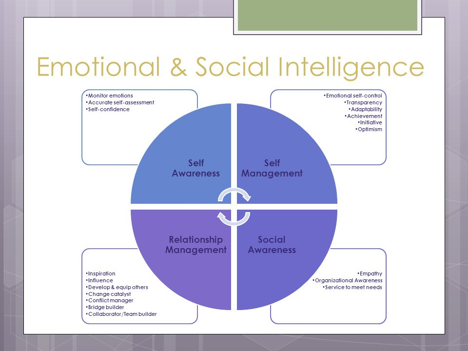 Emotional & Social Intelligence