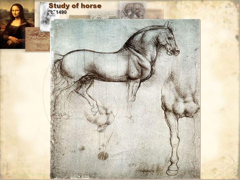 Study of horse c. 1490