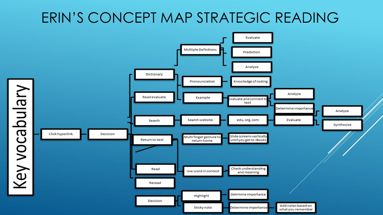 ERIN'S CONCEPT MAP STRATEGIC READING