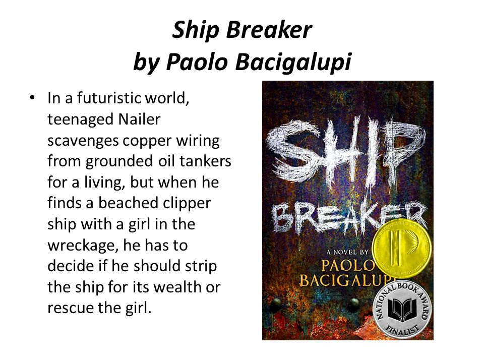 Ship Breaker by Paolo Bacigalupi In a futuristic world, teenaged Nailer scavenges copper wiring from grounded oil tankers for a living, but when he finds a beached clipper ship with a girl in the wreckage, he has to decide if he should strip the ship for its wealth or rescue the girl.