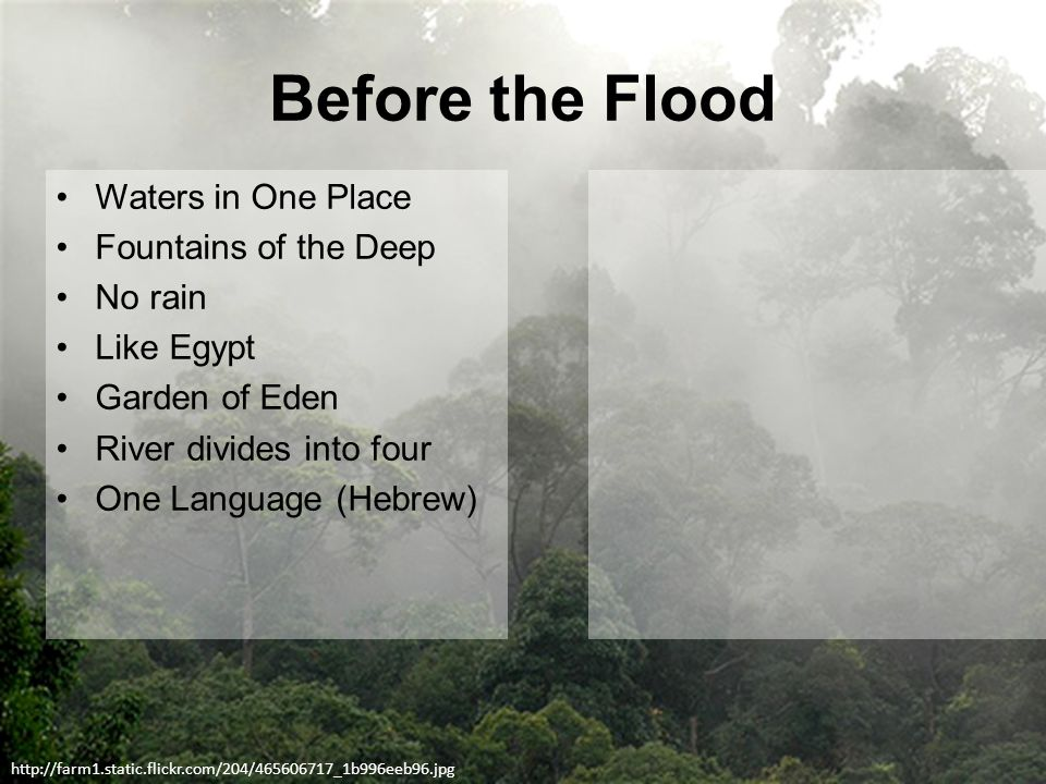 Before the Flood Waters in One Place Fountains of the Deep No rain Like Egypt Garden of Eden River divides into four One Language (Hebrew) http://farm1.static.flickr.com/204/465606717_1b996eeb96.jpg