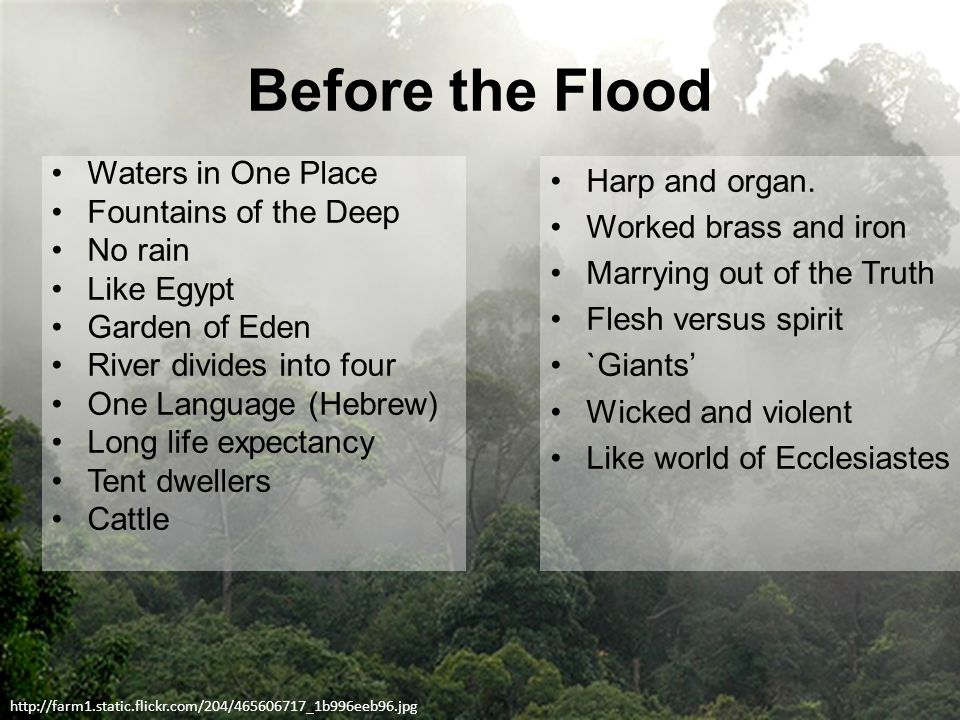 Before the Flood Waters in One Place Fountains of the Deep No rain Like Egypt Garden of Eden River divides into four One Language (Hebrew) Long life expectancy Tent dwellers Cattle Harp and organ.