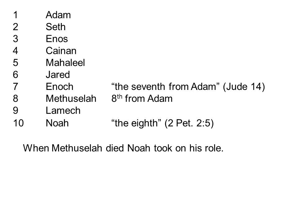 1Adam 2Seth 3Enos 4Cainan 5Mahaleel 6Jared 7Enoch the seventh from Adam (Jude 14) 8Methuselah8 th from Adam 9Lamech 10Noah the eighth (2 Pet.