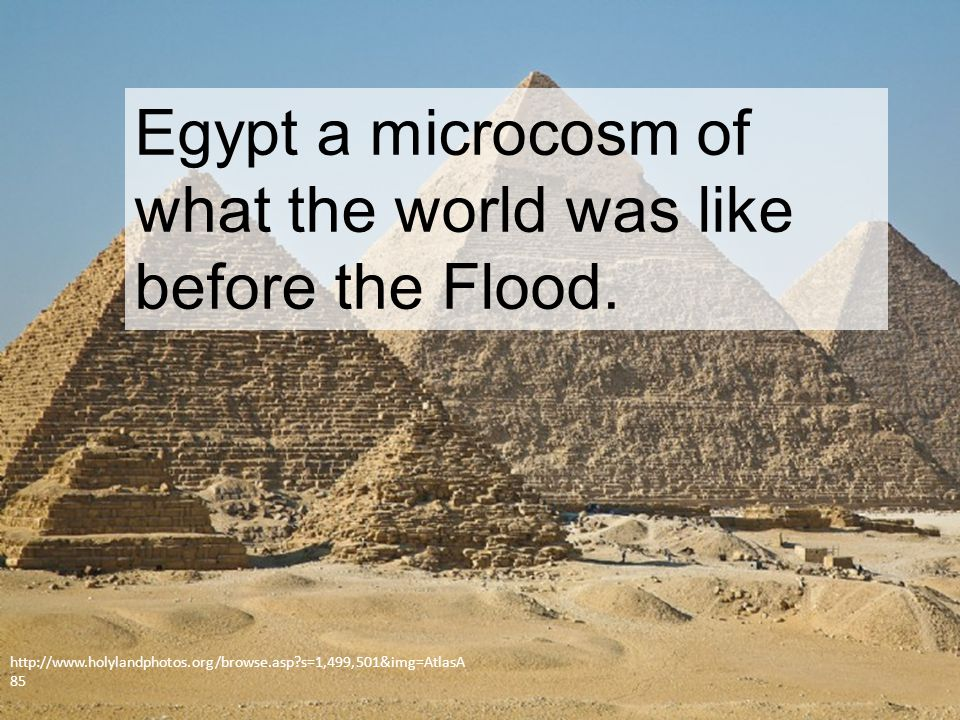 Egypt a microcosm of what the world was like before the Flood.