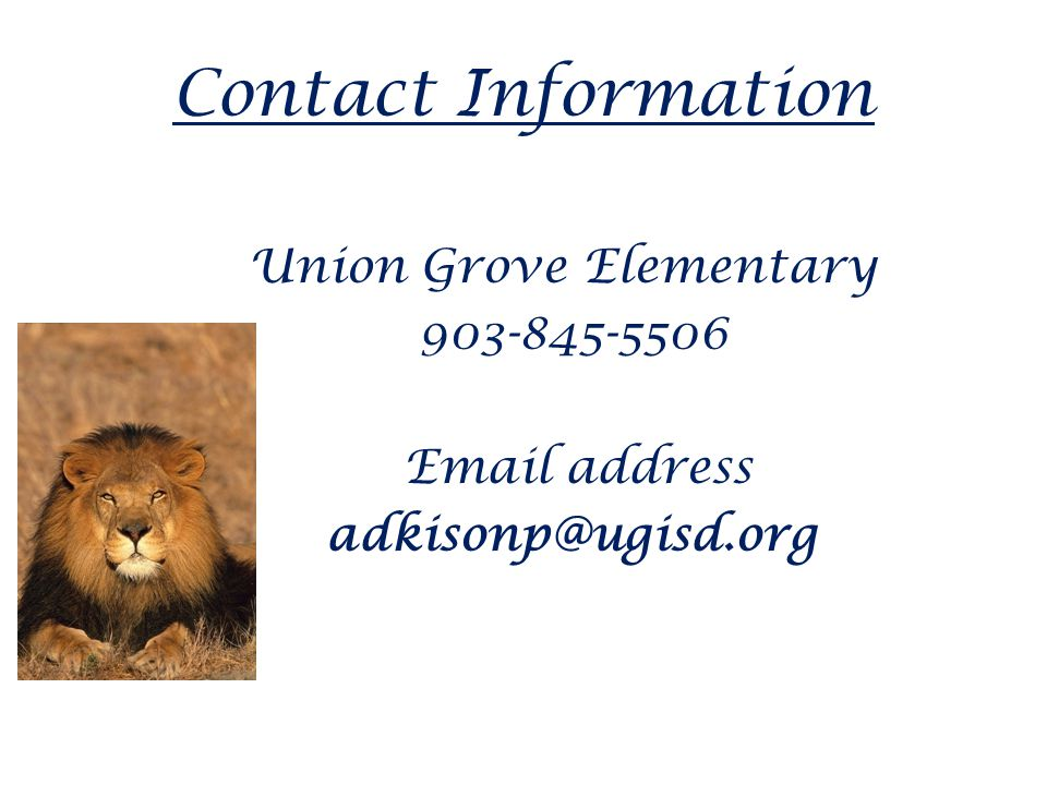 Contact Information Union Grove Elementary 903-845-5506 Email address adkisonp@ugisd.org