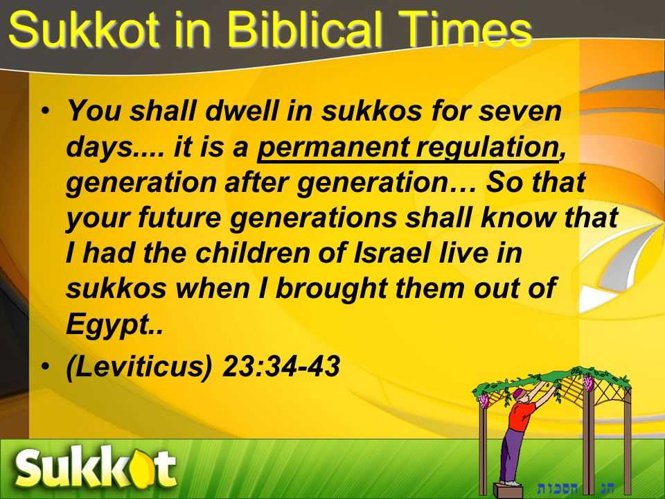 Sukkot in Biblical Times You shall dwell in sukkos for seven days.... it is a permanent regulation, generation after generation… So that your future g