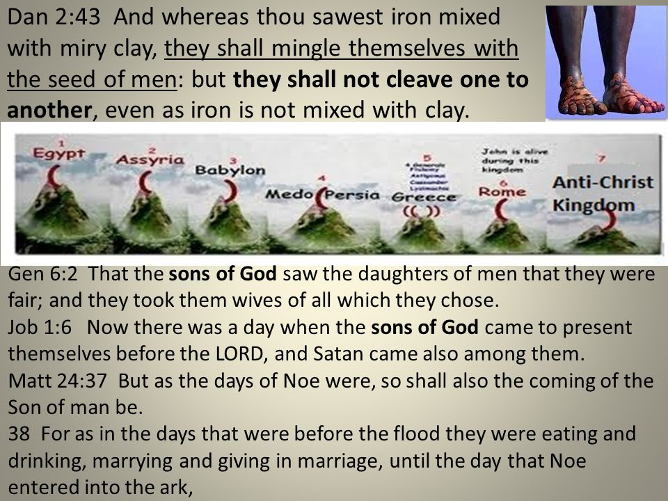 Dan 2:43 And whereas thou sawest iron mixed with miry clay, they shall mingle themselves with the seed of men: but they shall not cleave one to anothe