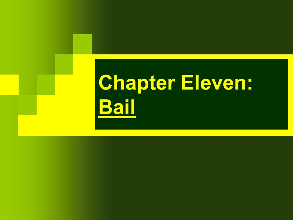 Chapter Eleven: Bail