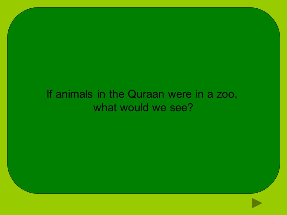 If animals in the Quraan were in a zoo, what would we see