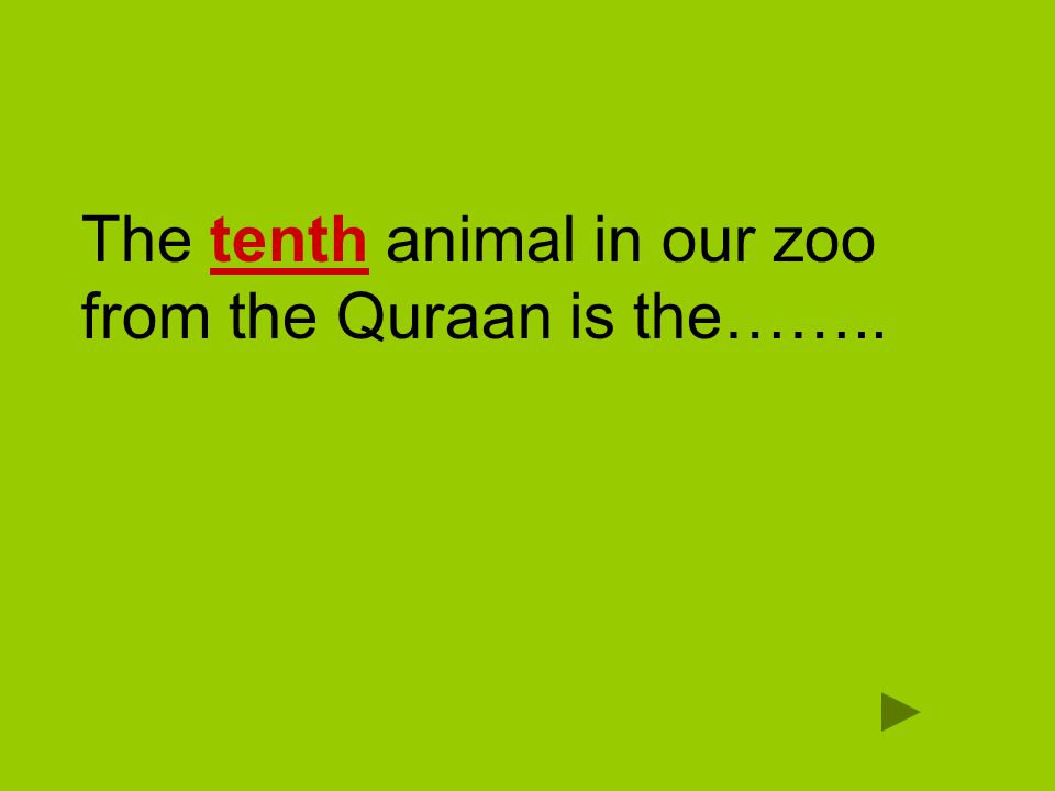 The tenth animal in our zoo from the Quraan is the……..