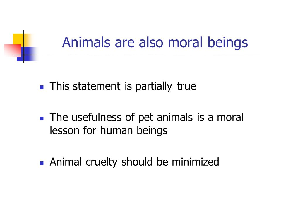 Animals are also moral beings This statement is partially true The usefulness of pet animals is a moral lesson for human beings Animal cruelty should