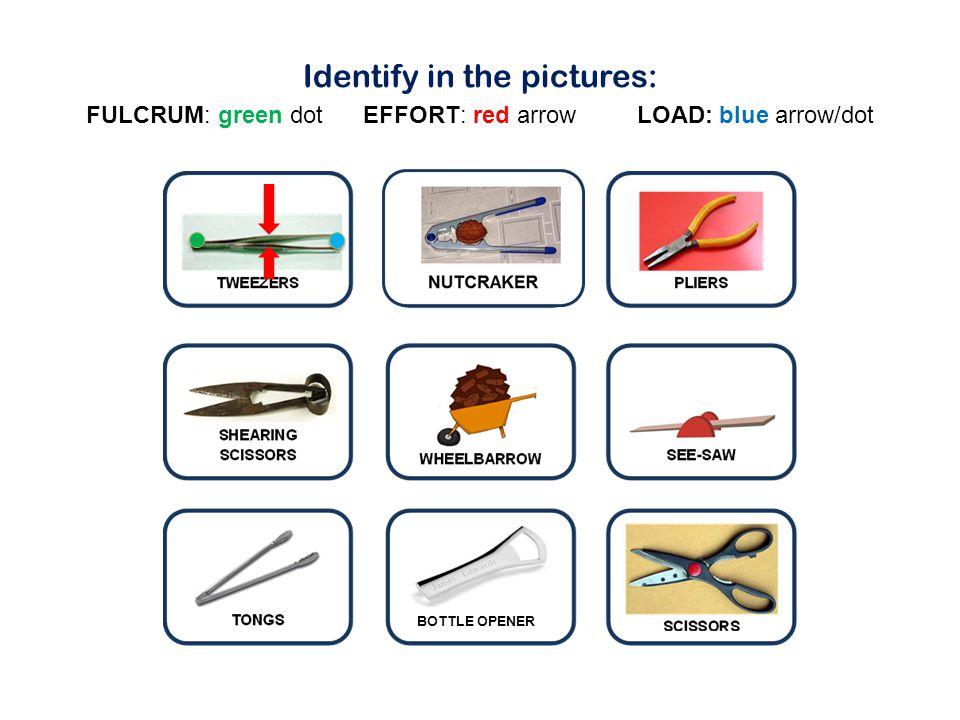 Identify in the pictures: FULCRUM: green dot EFFORT: red arrow LOAD: blue arrow/dot BOTTLE OPENER