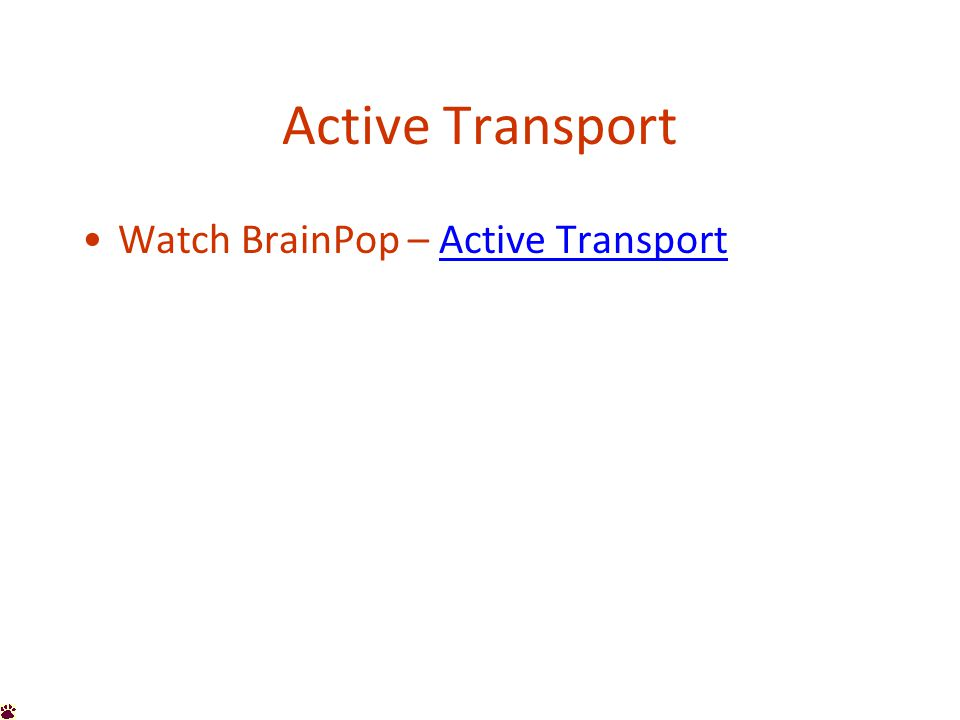 Active Transport Watch BrainPop – Active TransportActive Transport