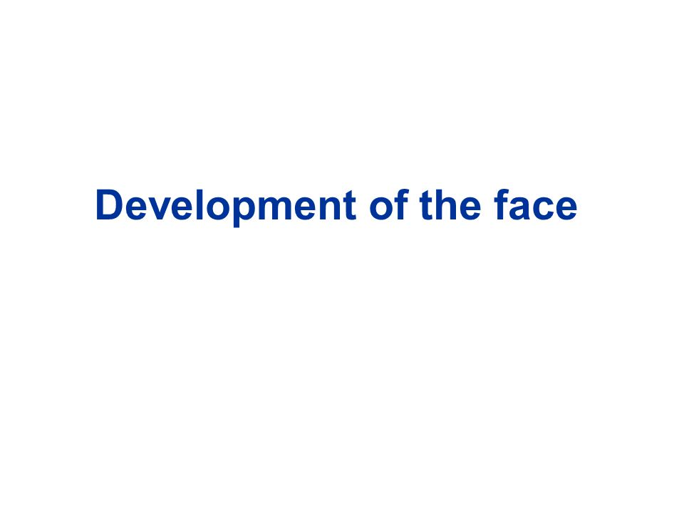 Development of the face