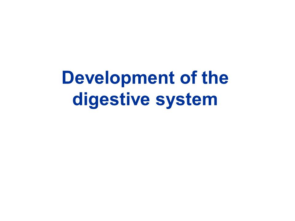Development of the digestive system