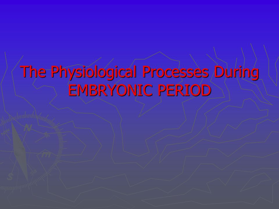 The Physiological Processes During EMBRYONIC PERIOD