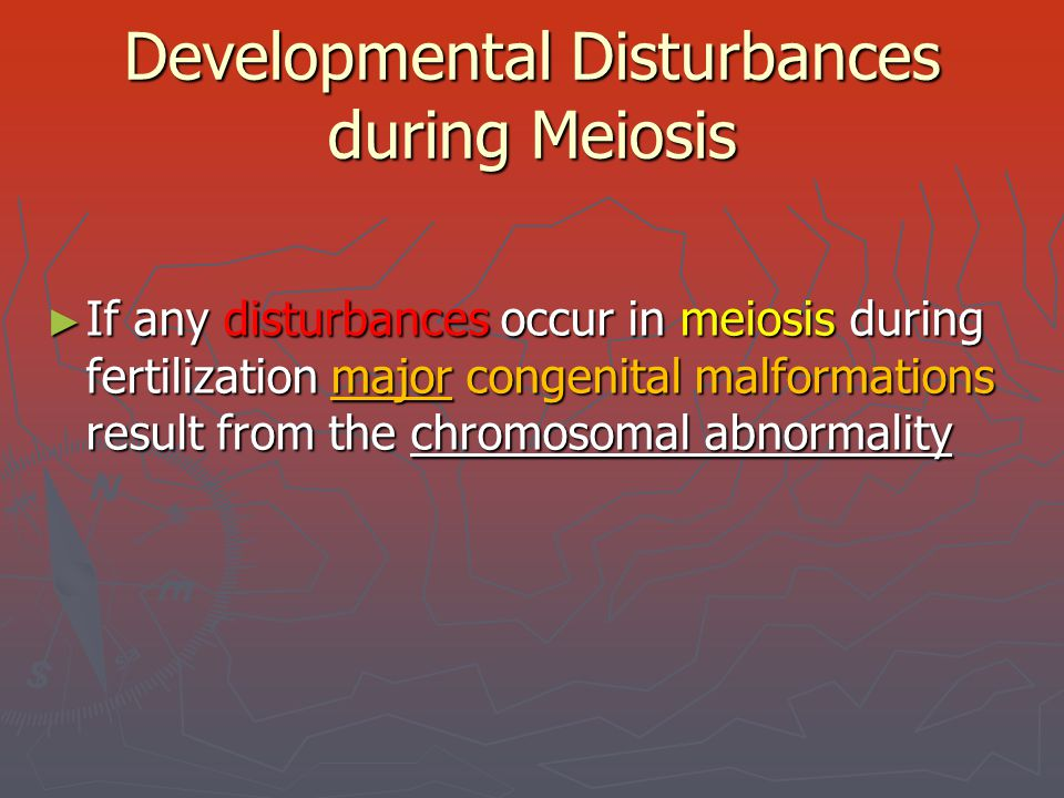 Developmental Disturbances during Meiosis ► If any disturbances occur in meiosis during fertilization major congenital malformations result from the c