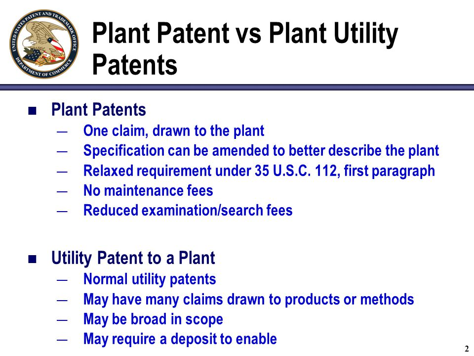 2 Plant Patent vs Plant Utility Patents Plant Patents — One claim, drawn to the plant — Specification can be amended to better describe the plant — Relaxed requirement under 35 U.S.C.
