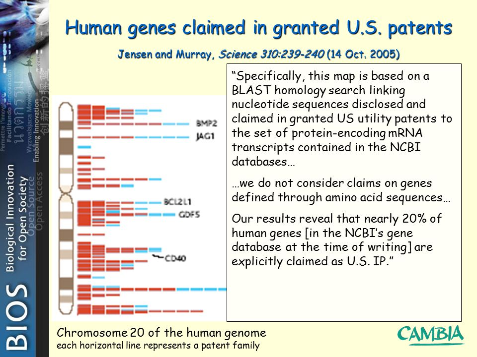 "Human genes claimed in granted U.S. patents Jensen and Murray, Science 310:239-240 (14 Oct. 2005) ""Specifically, this map is based on a BLAST homology"
