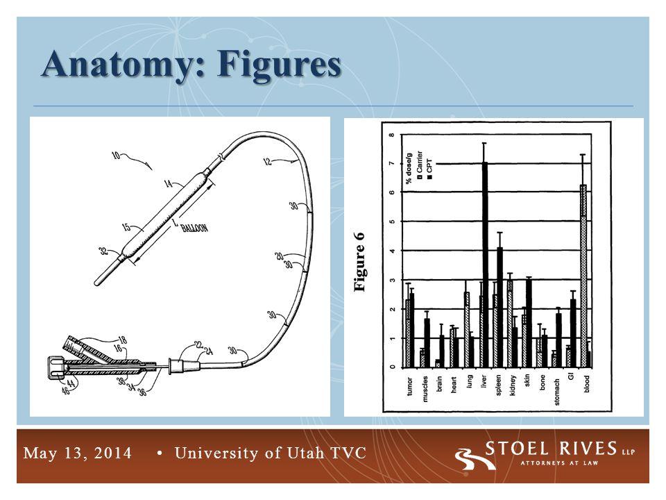4 May 13, 2014 University of Utah TVC Anatomy: Figures