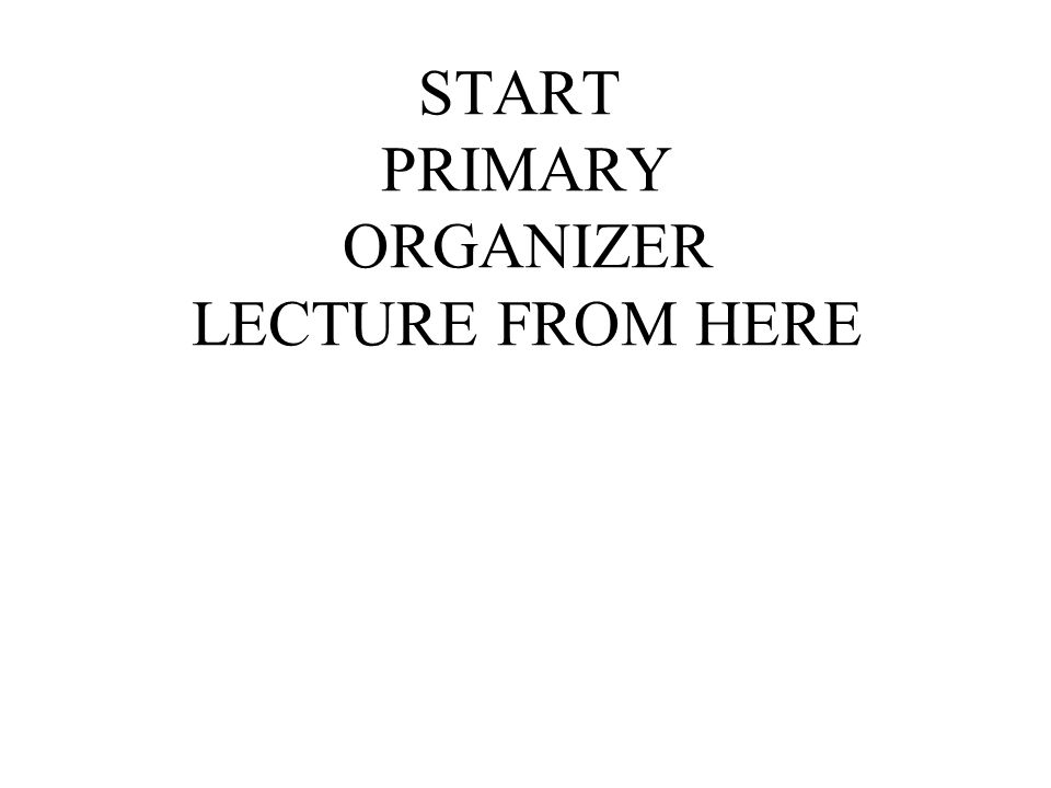 START PRIMARY ORGANIZER LECTURE FROM HERE