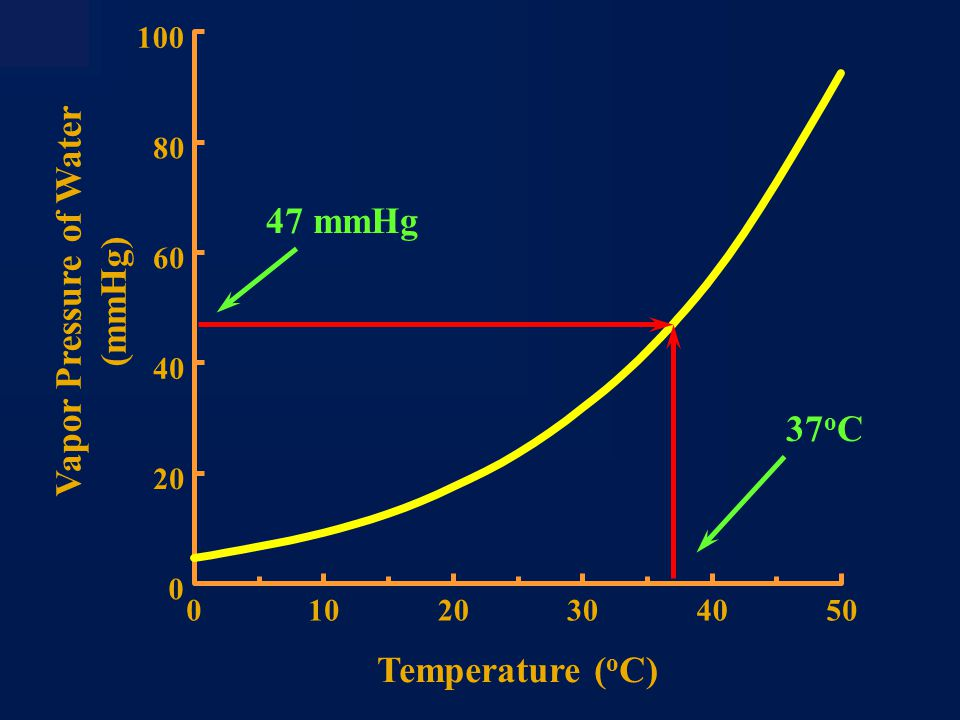 Hb Saturation (%) 100 80 60 40 20 0 2 406080 100 600 P O (mmHg) O 2 Content (ml O 2 /dl blood) 2 6 10 14 18 22 Oxygen Transport ΔPO 2  ΔSaO 2