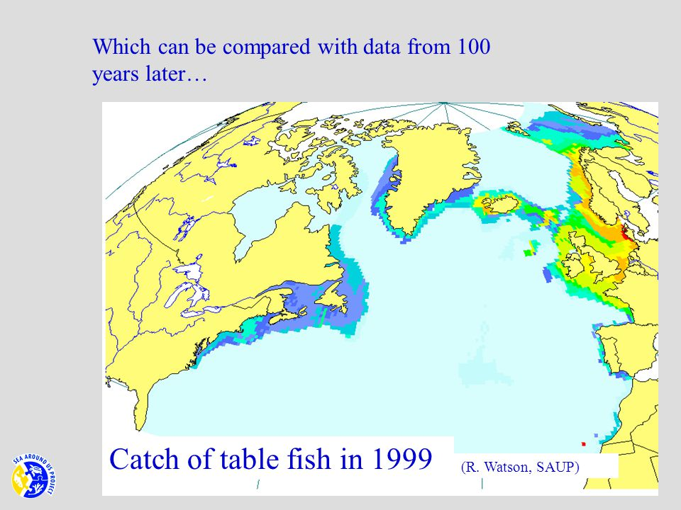 Catch of table fish in 1999 (R. Watson, SAUP) Which can be compared with data from 100 years later…
