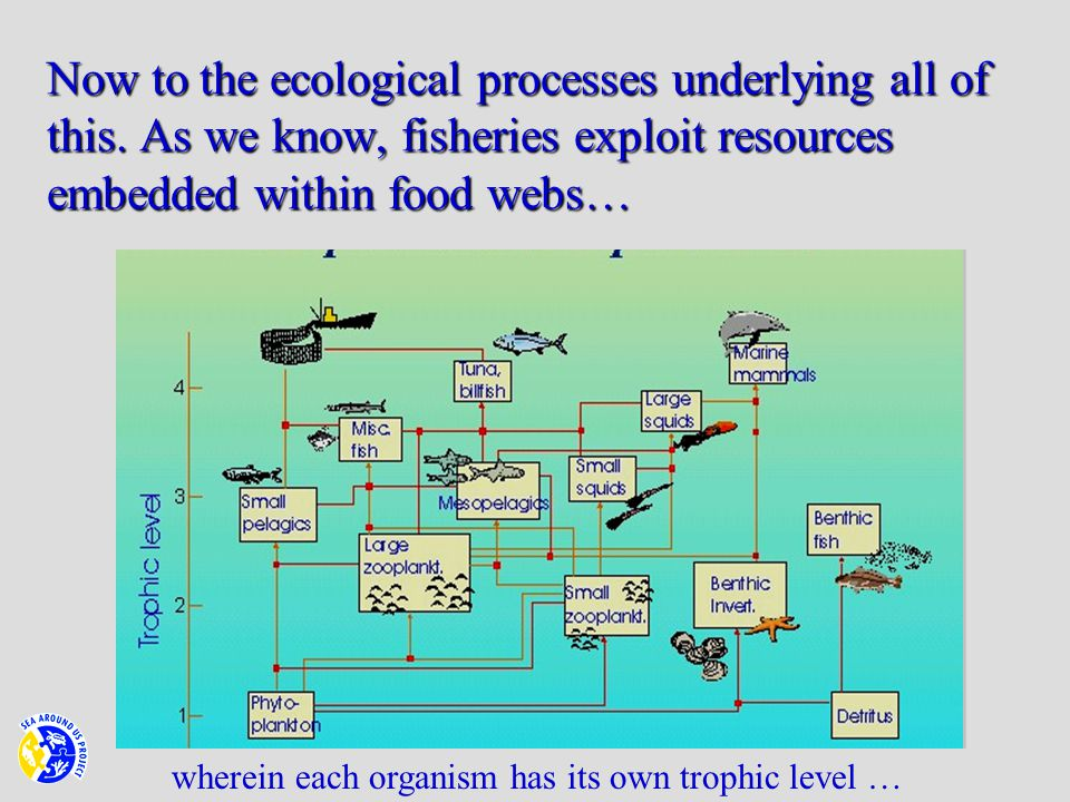 Now to the ecological processes underlying all of this.