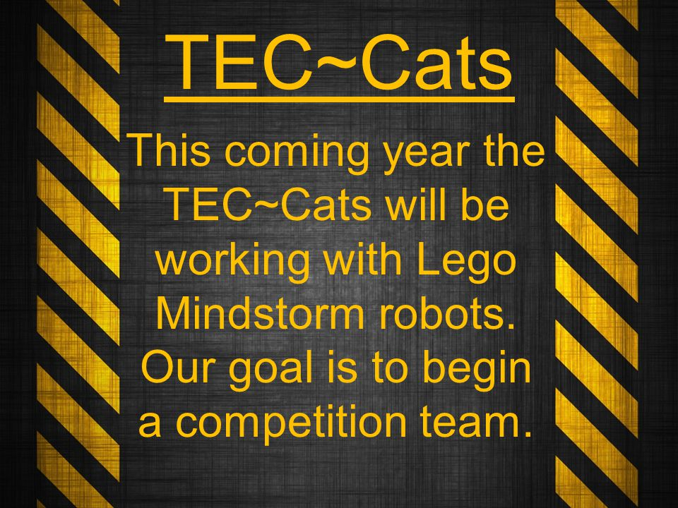 This coming year the TEC~Cats will be working with Lego Mindstorm robots.