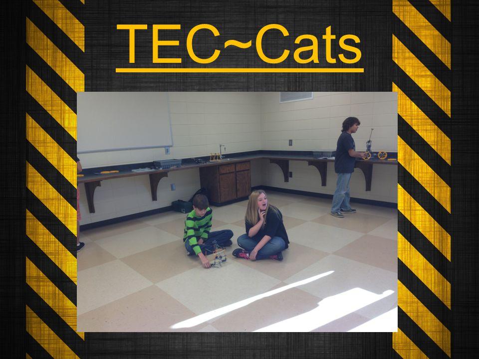 TEC~Cats
