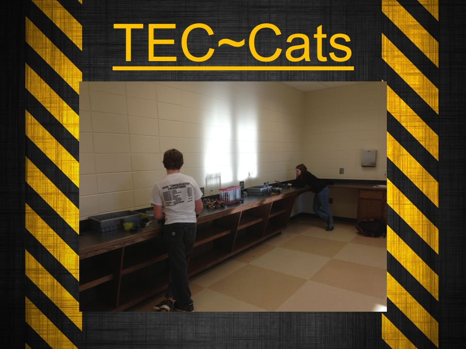 Over the course of the school year the TEC~Cats will participate in activities that will challenge their problem solving abilities.