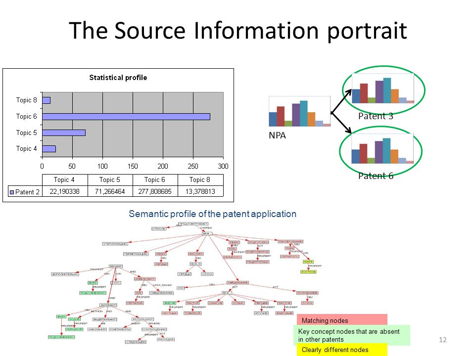 12 The Source Information portrait NPA Patent 3 Patent 6 Semantic profile of the patent application Matching nodes Key concept nodes that are absent in other patents Clearly different nodes