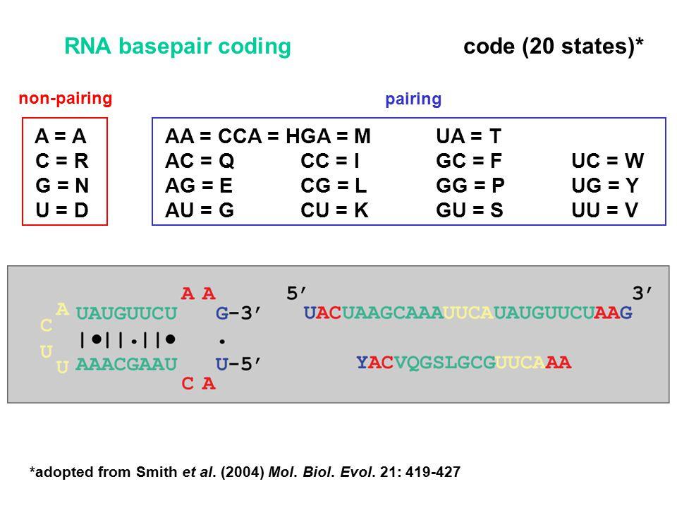 A = AAA = CCA = HGA = MUA = T C = RAC = QCC = IGC = FUC = W G = NAG = ECG = LGG = PUG = Y U = DAU = GCU = KGU = SUU = V *adopted from Smith et al.