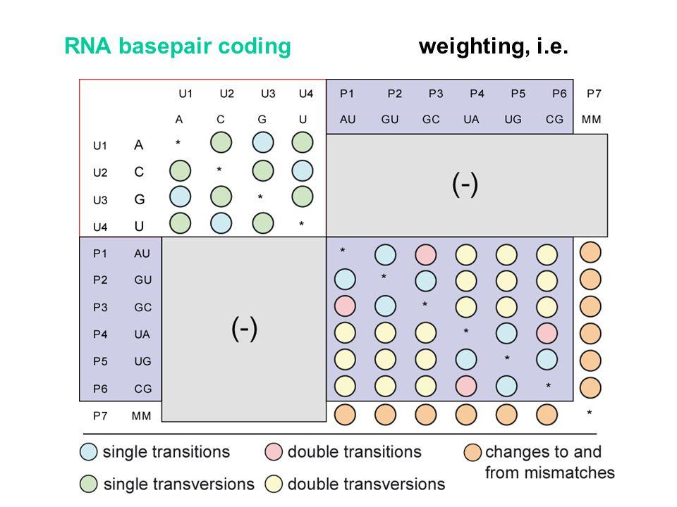 weighting, i.e.RNA basepair coding