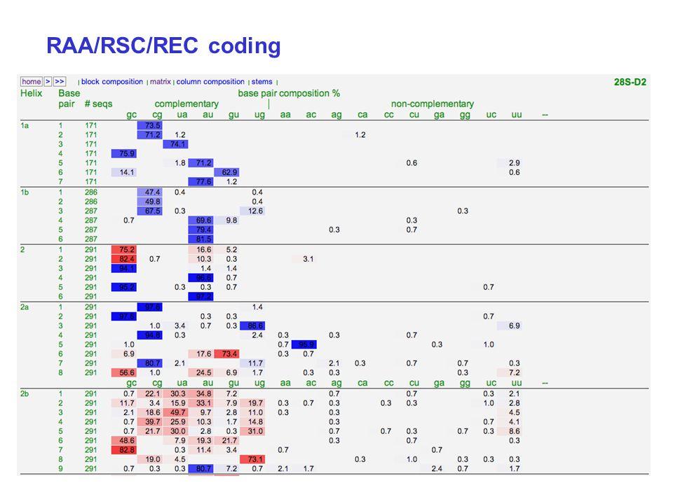 RAA/RSC/REC coding