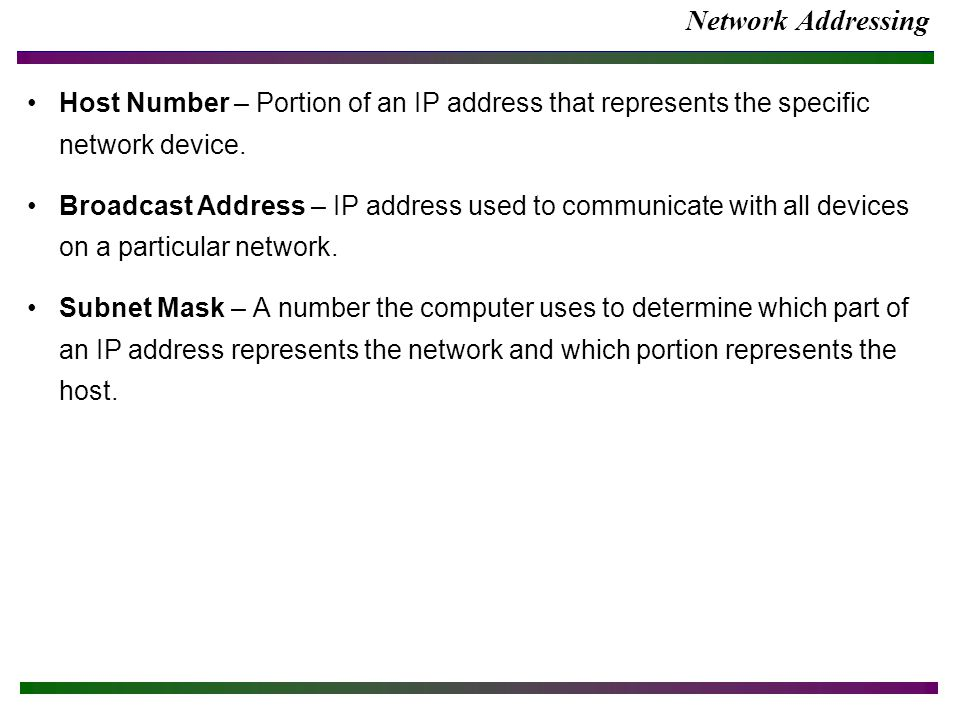 Network Addressing Host Number – Portion of an IP address that represents the specific network device.